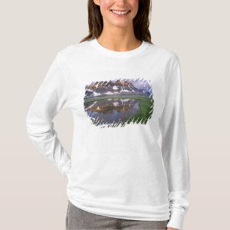 T-shirt Na, Canada, Alberta, vallée de Tonoquin. Jaspe