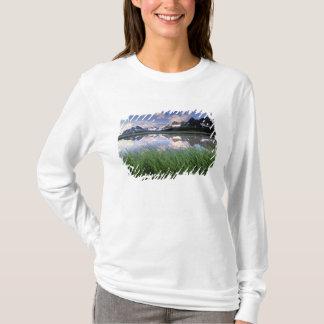 T-shirt Na, Canada, Alberta, vallée de Tonquin. Jaspe