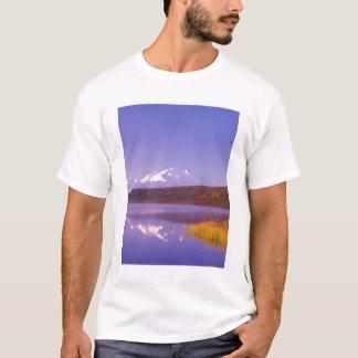 T-shirt Na, Etats-Unis, Alaska, Denali NP, lac wonder, Mt.