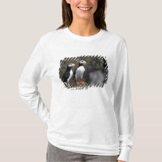 T-shirt Na, Etats-Unis, Alaska, mer de Béring, Pribilofs,