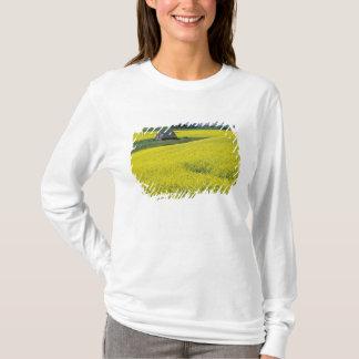 T-shirt Na, Etats-Unis, Idaho, près de Potlatch, grange en