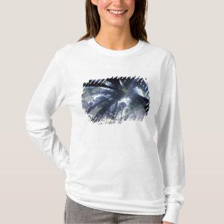 T-shirt Na, Etats-Unis, la Californie, état de Del Norte