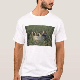 T-shirt Na, Etats-Unis, la Floride, la Floride rurale.