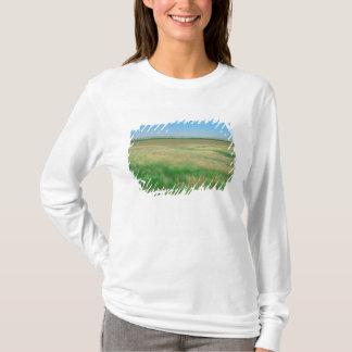 T-shirt NA, ETATS-UNIS, NE. Les prairies s'approchent