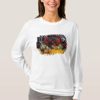T-shirt Na, Etats-Unis, Nouveau Mexique, Taos. Support du
