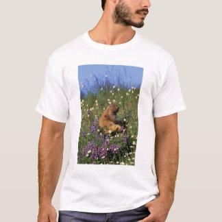 T-shirt Na, Etats-Unis, Washington, NP olympique,