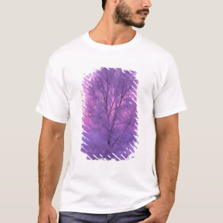 T-shirt Na, Etats-Unis, Wyoming, Yellowstone NP, paysage