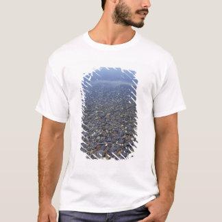T-shirt Na, roches des Etats-Unis, Montana, NP de glacier