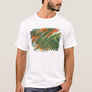 T-shirt Natation de poissons de carpe de Koi dans un étang