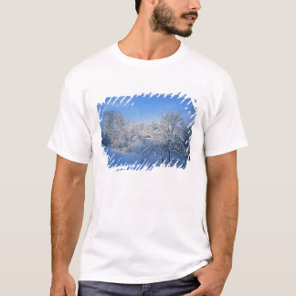 T-shirt Neige record à Louisville, Kentucky