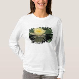 T-shirt Nénuphar domestique des Etats-Unis, Kentucky,