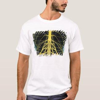 T-shirt Nerfs du plus lombo-sacré