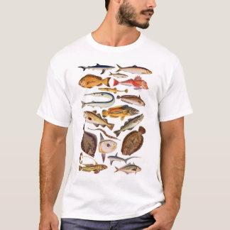 T-shirt newartsweb - tellement beaucoup plus de poissons,