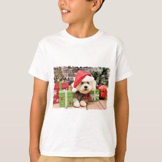 T-shirt Noël - Bichon Frise - marguerite