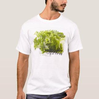 T-shirt Nourriture, nourriture et boisson, légume, laitue,