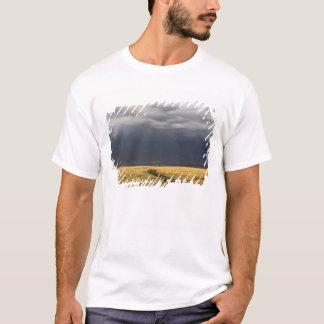 T-shirt Nuages et route de tempête à travers les plaines
