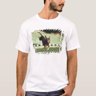 T-shirt Obstacle sautant de chiwawa
