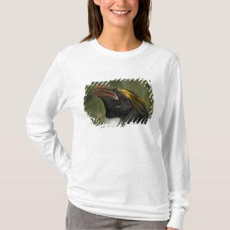 T-shirt Océan Atlantique sud, île du sud de la Géorgie, 2