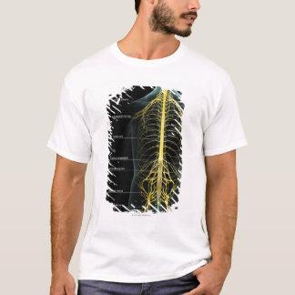 T-shirt Offre de nerf de tronc