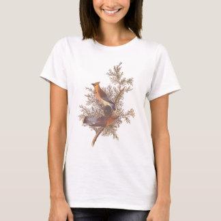 T-shirt Oiseau de jaseur de cèdre d'Audubon