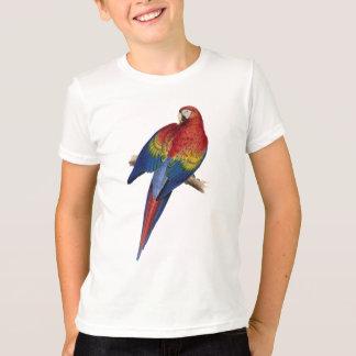 T-shirt Oiseau jaune rouge de vert bleu de perroquet d'ara