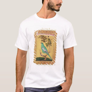 T-shirt Oiseau vert, Mughal (gouache sur le papier)