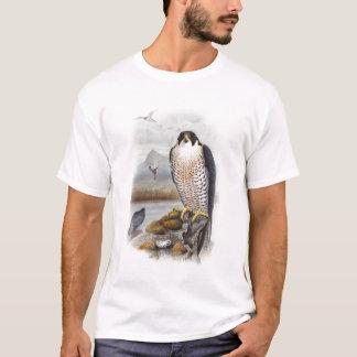 T-shirt Oiseaux de John Gould de faucon pérégrin de la