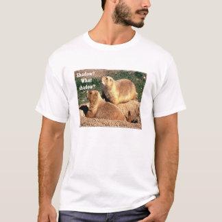 T-shirt Ombre ?