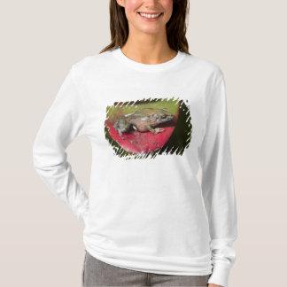 T-shirt Orestes de Pristimantis de grenouille de voleur