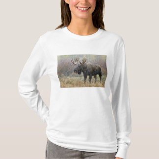 T-shirt Orignaux de Taureau dans la tempête de neige avec