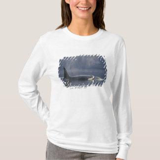 T-shirt Orque d'Orcinus de baleine d'orque de femelle