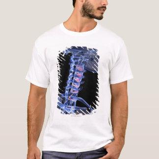 T-shirt Os du cou 3