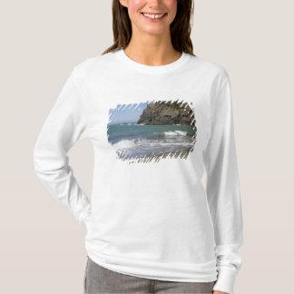 T-shirt OU, côte de l'Orégon, plage de Whaleshead, sud