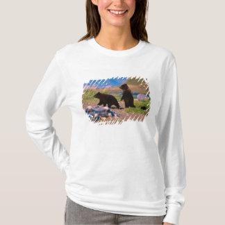 T-shirt Ours de Brown, arctos d'Ursus, péninsule de