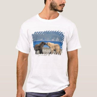 T-shirt Ours de Brown, ours gris, jeu sur la plage,