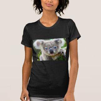 T-shirt Ours de koala
