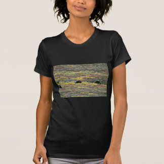 T-shirt Ours gris, parc national de Denali, Alaska la