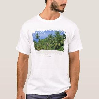 T-shirt Palmier 3