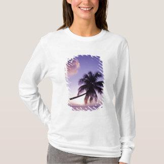 T-shirt Palmier solitaire au coucher du soleil, plage de