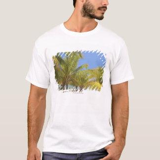 T-shirt Palmiers sur une plage blanche de sable du