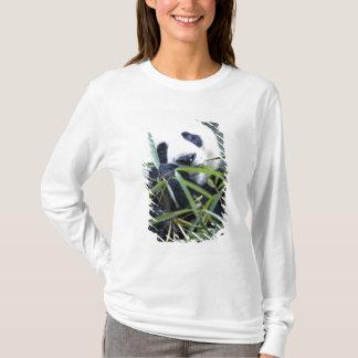 T-shirt Panda mangeant des pousses de bambou Alluropoda