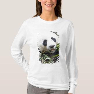 T-shirt Panda mangeant des pousses de bambou Alluropoda 2