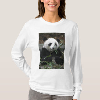 T-shirt Pandas géants à la protection de panda géant et