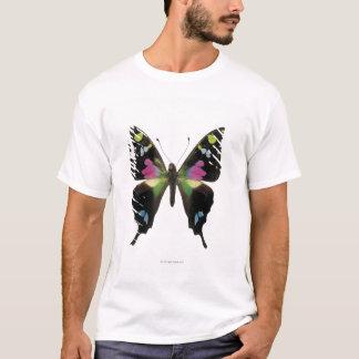 T-shirt Papillon de Graphium