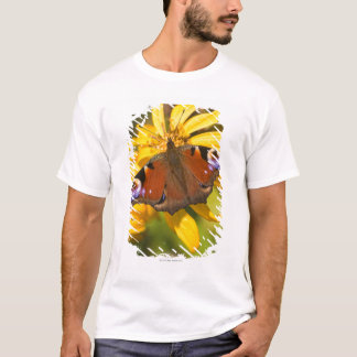 T-shirt Papillon de paon