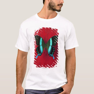 T-shirt Papillon noir et bleu sur le mur rouge