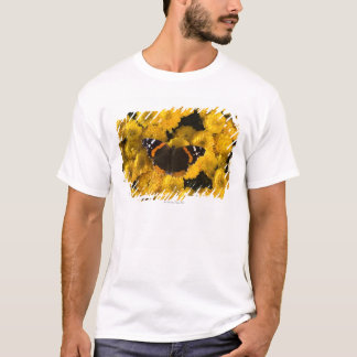 T-shirt Papillon sur les asters jaunes