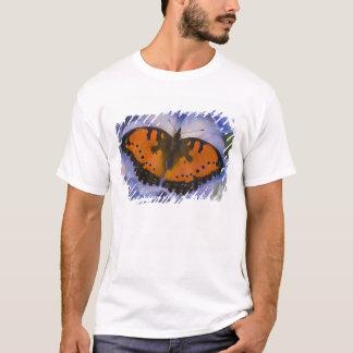 T-shirt Papillon tropical 4 de Sammamish Washington