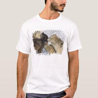 T-shirt Paquet de loups agissant l'un sur l'autre