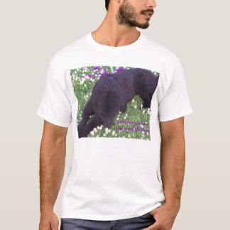 T-shirt Parfois vous hav…